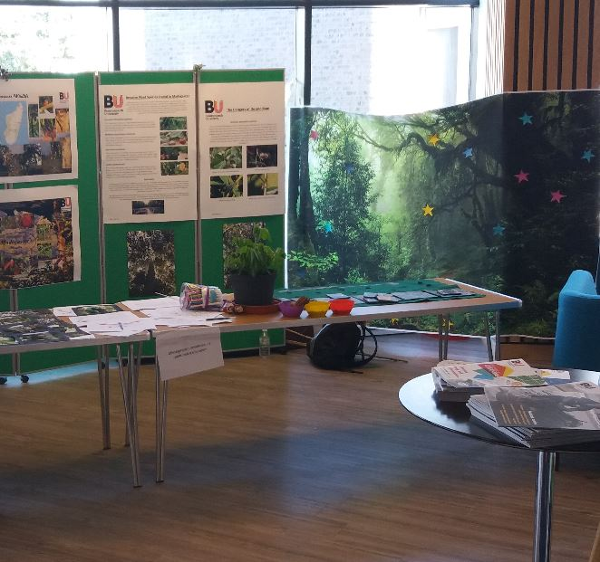 The rainforests of Madagascar are filled with special species. At this Festival of Learning stall we  showcased posters, images and sounds of some of the wonderful wildlife we found. We also had interactive puzzles and games for younger visitors.