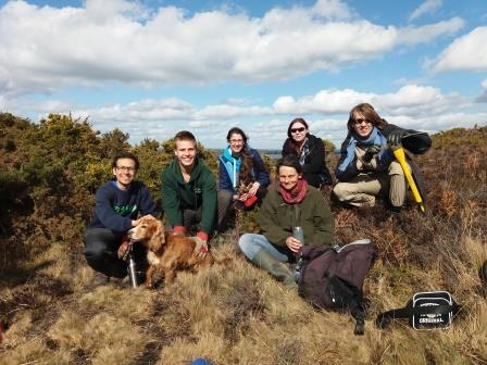 We have started a project in colloboration with Dorset's Heathland Heart Project from Back from the Brink with a team of SUBU Wildlife Conservation Society students. The aim is to make and monitor microhabitats for the rare Purbeck Mason Wasp. These need special bare ground patches on heaths in which to make egg burrows. We will create varied patches and test which are used most by the wasps and other burrowing insects.